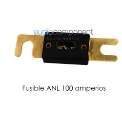 Fusible ANL 100 amperios